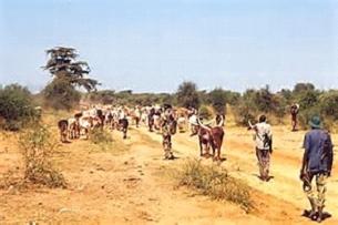 Droogte Somalië